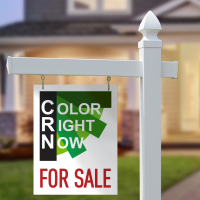 For Sale sign in front of house with Color Right Now logo.